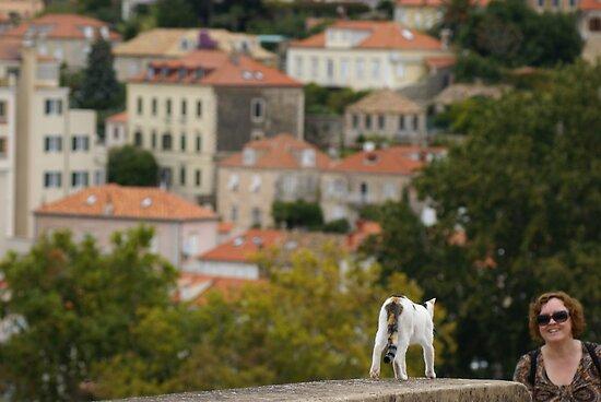 on the walls of Dubrovnik by BronReid