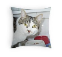 Miss Holley Throw Pillow