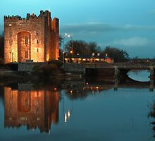 Bunratty Castle At Night, County Clare, Ireland by upthebanner