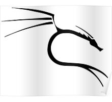 kali linux Poster