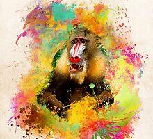 Mandrill Monkey by JBJart