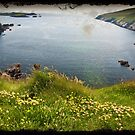 Ring Of Kerry, Skellig Island. Ireland by Noel Moore Up The Banner Photography