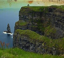Cliffs of Moher, County Clare, Ireland by upthebanner