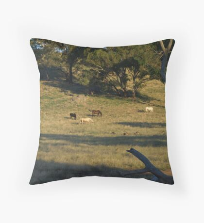 Late Afternoon On The Farm. Throw Pillow