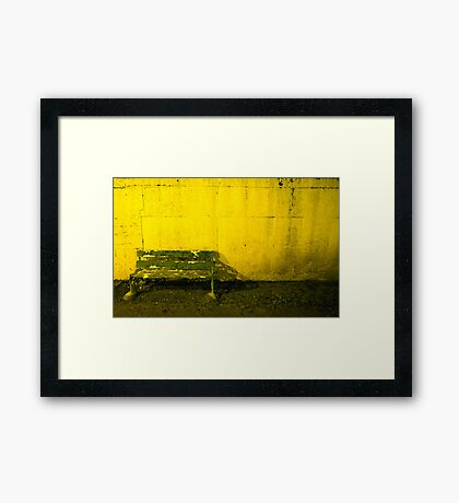 Seat For Watching The Dogs Framed Print