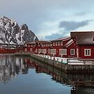 Norway by Dominika Aniola