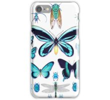 Teal Insect Collection iPhone Case/Skin