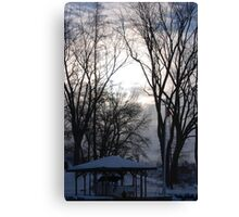 Above the trees Canvas Print