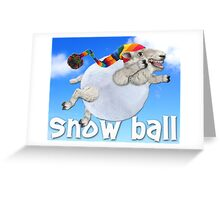 Snow Ball Greeting Card
