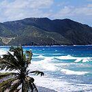 St. Croix US Virgin Island by barnsis