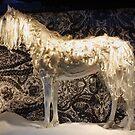 Ornamental Horse by AnnDixon