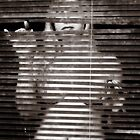 Nude Through Venetian Blinds by melmoth