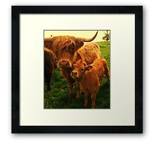 This is my mummy! Framed Print
