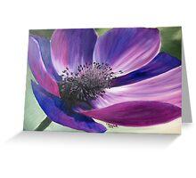 Anemone Coronaria Greeting Card