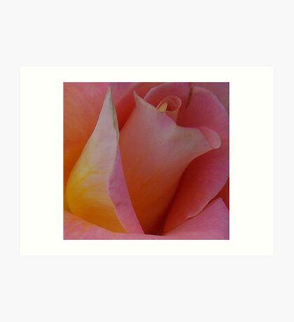 Pink Blossom - Digital Photograph Art Print
