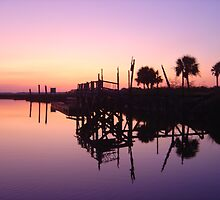 Savannah Sunset by Dharmesh  Parmar