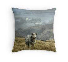 A Lakeland Icon Throw Pillow
