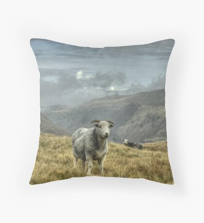 A Lakeland Icon Throw Pillow