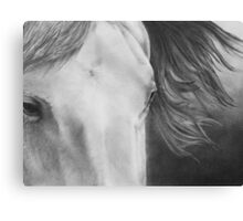 """Eyes of Epona"" Close up of a Horse Canvas Print"