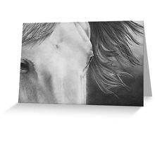 """Eyes of Epona"" Close up of a Horse Greeting Card"