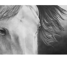 """""""Eyes of Epona"""" Close up of a Horse Photographic Print"""