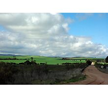 Green pastures and fluffy white clouds Photographic Print