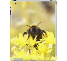 Golden Bee iPad Case/Skin