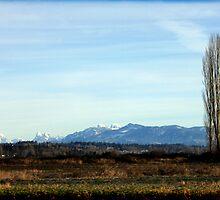 Snohomish Landscape by gerardofm4