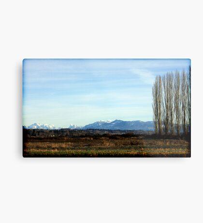 Snohomish Landscape Metal Print