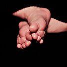Newborn Baby Feet by Glenna Walker