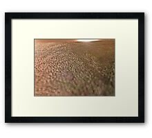 The Plain Framed Print