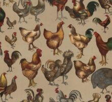 Poultry of the World (1868) Sticker