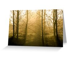 First cold mornings of Autumn Greeting Card