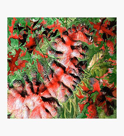 """Dragon Hills"" Photographic Print"