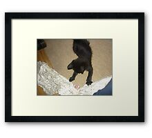 willow playing Framed Print