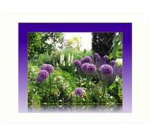 Alliums and Lupins in Reflection Frame Art Print