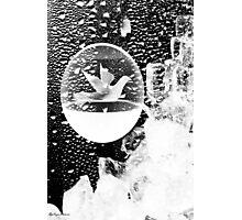 Winter sonata Photographic Print