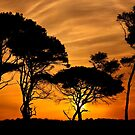 """African"" sunset @ Kaiafas beach by Hercules Milas"