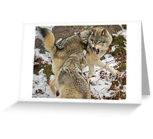 Mild confrontation Greeting Card
