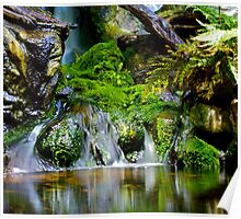 Waterfall in a Rustic Setting Poster