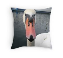 Lovely brooklyn baby swan Throw Pillow