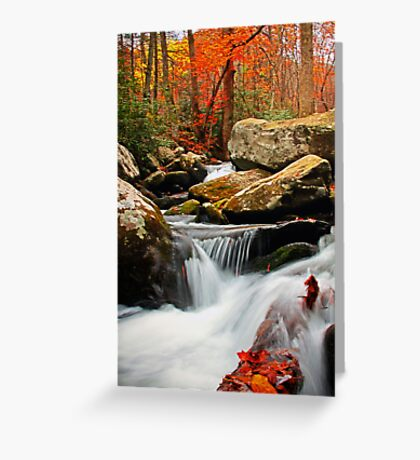 ~Go With the Flow~ Greeting Card