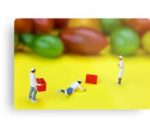 Chef Tumbled In Front Of Colorful Tomatoes miniature art Metal Print