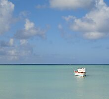 Lone Boat in Aruba by Alecia Hoobing