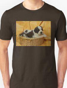 Jody the Saint Bernard puppy T-Shirt