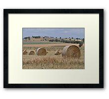 2000 hay bales Framed Print