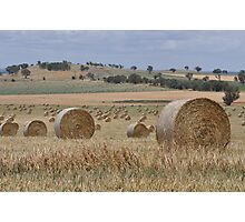 2000 hay bales Photographic Print