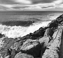 WET ROCKS AT DOCKWEILER BEACH 2 by Paul Quixote Alleyne