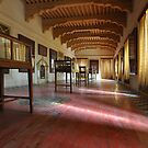 Art Gallery by Peter Hammer