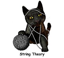 String Theory  Photographic Print
